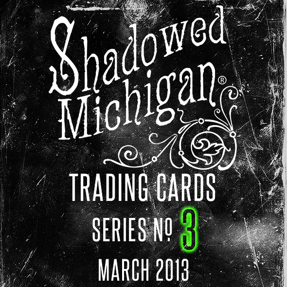 Shadowed Michigan Series No 3 Teaser